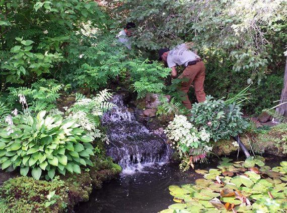 Bassin M. Pelletier par Irrigation Pro-Tech Lanaudière